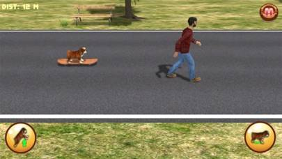 Bulldog on Skateboard 3D Walkthrough (iOS)