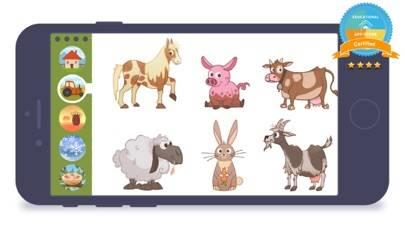 - Animals -
