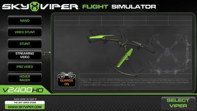Sky Viper Flight Simulator