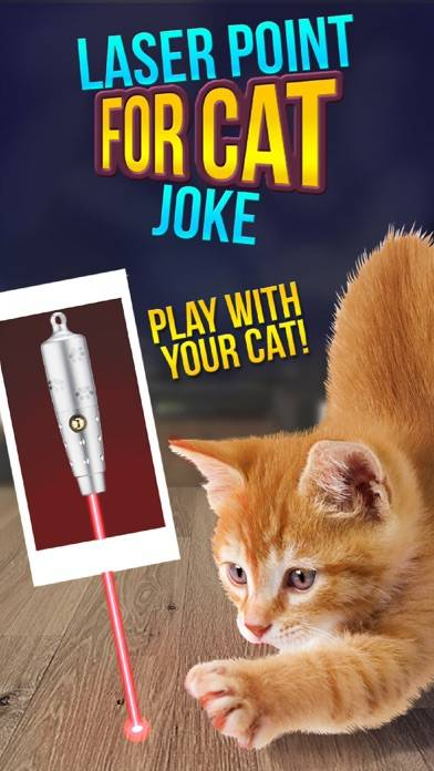 Laser Point For Cat Joke Walkthrough (iOS)