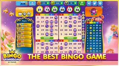 Bingo Kingdom by Playcus