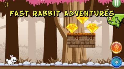 Fast Rabbit Adventures