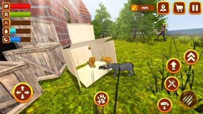 Hunting Cat Survival Simulator 3D