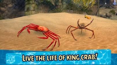 Sea Crab Simulator 3D