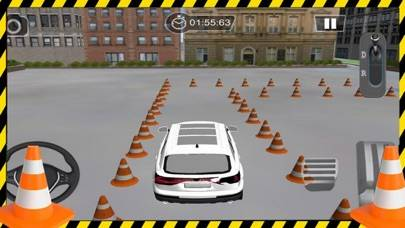 Driving Skill 3D - Car SIM