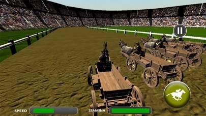 Crazy Horse Cart Race