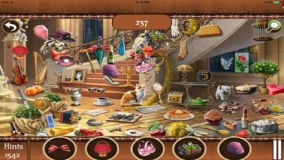 Hidden Objects:Big Home Mania