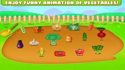 Learn Vegetable Names