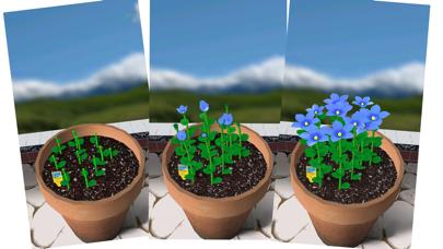 Flower Garden - Grow Flowers and Send Bouquets