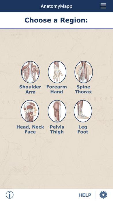 AnatomyMapp