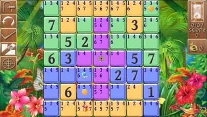 Sudoku Riddle
