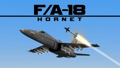 FA18 HORNET Combat Jet Flight Simulator