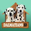 Dalmatians IO Icon