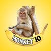 Monkey IO Icon