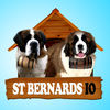 St Bernards IO Review iOS