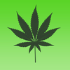 Hemp Blocks Icon