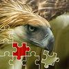 Birds Jigsaw Puzzles
