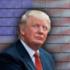 Great Wall of Trump Icon