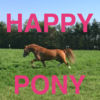 Happy Pony by Horse Reader Icon
