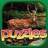 Animal Puzzle Premium Icon