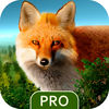 Wild Forest Hunt Pro