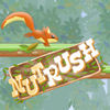 Nut Rush Adventure
