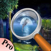 The Moon Light Hidden Object