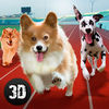 Dog Racing Tournament Sim 3D Full Icon