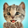 Little Kitten My Favorite CatBooks Game Review iOS