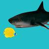 SlappyFish Icon