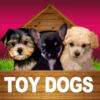 Toy Dogs Opoly Icon