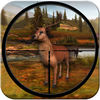 Animal Hunting Adventure