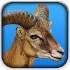 Goat Fight Simulator