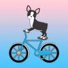 Boston Terrier Flip Tricks Challenge Icon