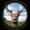 Deer Hunting Simulator  Gold 2017