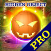 Attic Treasure Pro Hidden Object