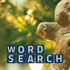 Wordsearch Revealer Christmas Icon