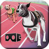 VR Crazy Dog Race Now Available On The App Store