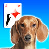 Doxie Solitaire
