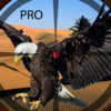 A Eagle Shooting Pro Icon