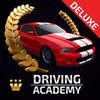Driving Academy 2017  Deluxe