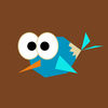 Birdie Go Challenge PRO