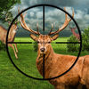 Junglee Deer Hunting Adventure Now Available On The App Store