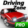 Driving Zone Japan Pro