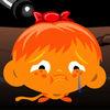 逗小猴开心系列20  全民都爱玩的益智解密游戏