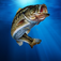 i Fishing Icon
