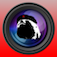 SlothCam Webcam Browser Icon