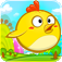 Run, Run, Chicken icon