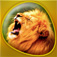 Animals 360 Gold Icon