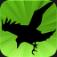 Raven Toll Icon